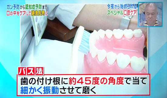歯の磨き方はバス法