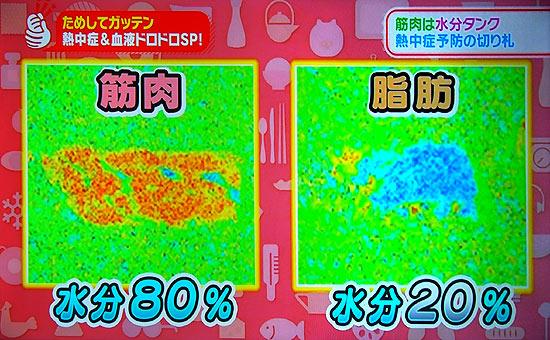 赤みの肉は筋肉。脂肪の肉は霜降りの水分量を比べてみた