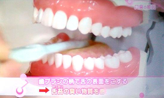 上歯を磨くとき、歯ブラシの裏側て舌の表面をこする